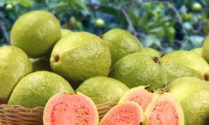 5 Foods High In Vitamin C (Video)