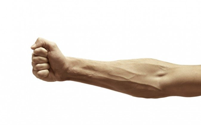 As they transport blood against the force of gravity, veins require special mechanisms to ensure that blood doesn't flow backwards. (Shutterstock*)