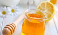 Honey Found to Have Potent Anti-Influenza Activity