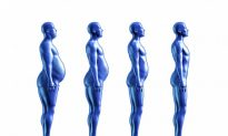 How Fat Loss Results Really Happen