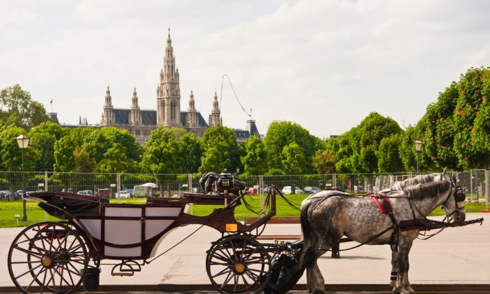 Summer and horses. Townhall in Vienna, Austria. (*Shutterstock)