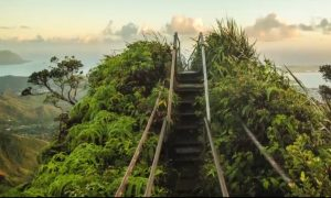 Hiking 'Stairway to Heaven' in Oahu Hawaii