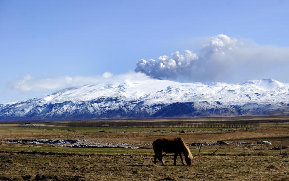 A pony grazes as smoke and ash below from the Eyjafjallajökull volcano near Porolfsell, Iceland on April 21, 2010 (Emmanuel Dunand/AFP/Getty Images)