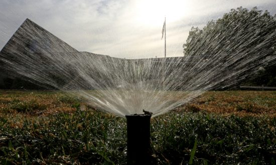 Ice Bucket Challenge 'Contributing to California Drought', Fining for Wasting Water Articles Are Fake