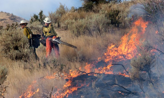 Kevin Green (L) and Brandon Scott shield themselves from the heat of a burning sagebrush as a wildfire threatens eight homes on Skyline Drive in Wenatchee, Wash., early Sunday morning, July 6, 2014. (AP Photo/The Wenatchee World, Don Seabrook)