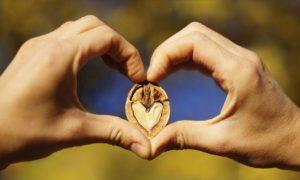 Nuts Lower Cholesterol
