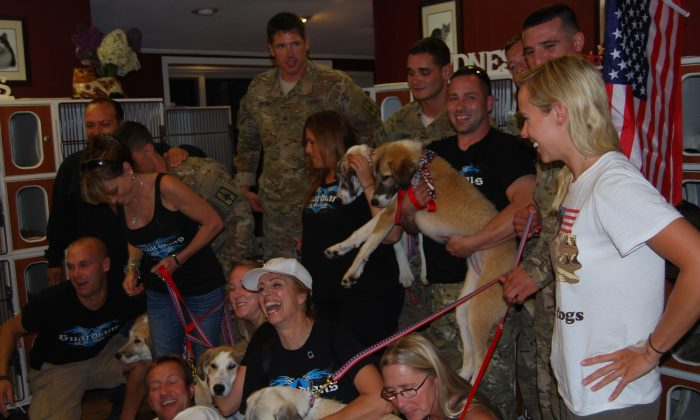 Guardians of Rescue with some dogs they returned to their military owners. Military rules and logistics do not allow soldiers to take animals home from war with them, but leaving a beloved animal behind is a crushing blow. (Guardians of Rescue)