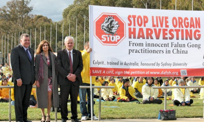 Australian MP Craig Kelly, Professor Maria Fiatarone Singh from Sydney University, and Senator John Madigan (L-R) join 400 Falun Gong Practitioners at the July 20 Commemoration Rally in front of Australian Parliament House on July 16, 2014. (Minghui.org)