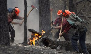More Crews Arrive as BC Braces For Another Round of Wildfires