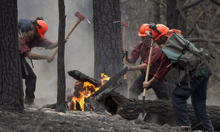 Firefighters tackle a flare-up at the Smith Creek fire in West Kelowna on July 19, 2014. Cooler weather and rainfall in parts of B.C. have helped quell wildfires across the province, but more hot, dry weather that could send the wildfire danger soaring is expected by Friday. (The Canadian Press/Jonathan Hayward)