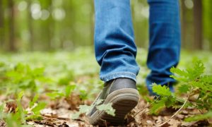 Slow Walking Speed and Memory Complaints Can Predict Dementia