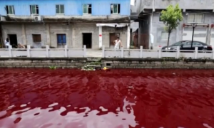 Chinese River Turns Bloody Red Overnight (Video)