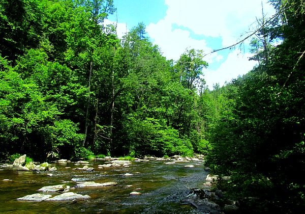 Approaching Abrams Falls in the Great Smoky Mountains National Park (Traveling Ted)
