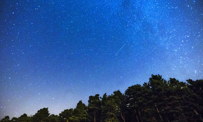 Two Perseid meteors, centre and lower left, streak across the sky during the annual Perseid meteor shower above a forest on the outskirts of Madrid, in the early hours of Monday, July 28, 2014. (AP Photo/Andres Kudacki)