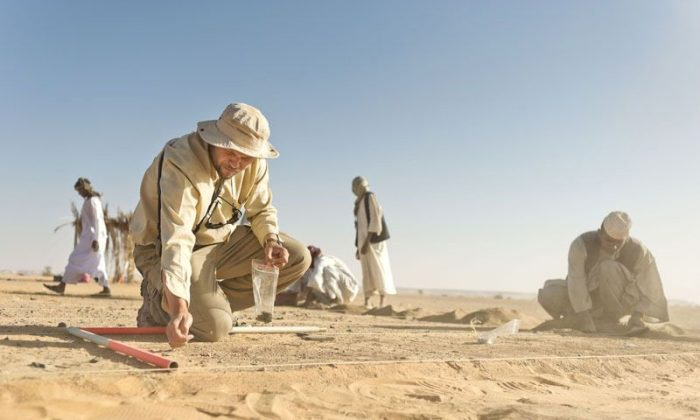 Archaeologist Piotr Osypinski works at the Affad 23 site in Sudan, Africa. (Michal Sita, Courtesy of Palaeoaffad Project-Sudan)