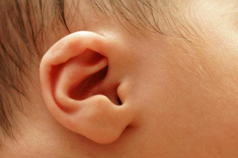 Baby's Ear