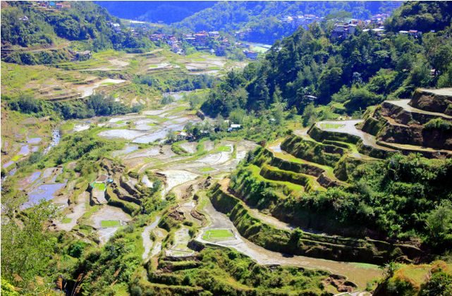Rice Terraces in Banaue (eTramping.com)