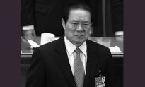 Taking Down a Tiger: The Month's Events Leading up to Zhou Yongkang's Fall