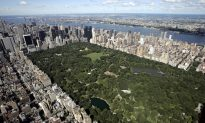 Luxury Market Sales Expand More Than Overall NYC Market in Q4 2014