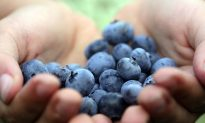 It's National Blueberry Month, Enjoy!