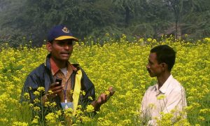 Cell Phone Technology a Life Line for India's Farmers