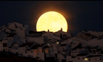 """Huge """"Supermoon"""" Lights Up the Sky (Video)"""