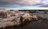 Arctic: Dangerous but Beautiful (Video)