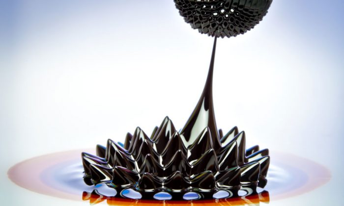 Macro photograph of Ferrofluid flowing from one magnet to another. Ferrofluid is a colloidal liquid of nanoscale particles in a carrier fluid that becomes magnetized by approaching a magnet. Liquids behave oddly at the nanoscale. Water, for example, seems to flow much faster within carbon nanotubes than classical physics says should be possible. (Shutterstock*)