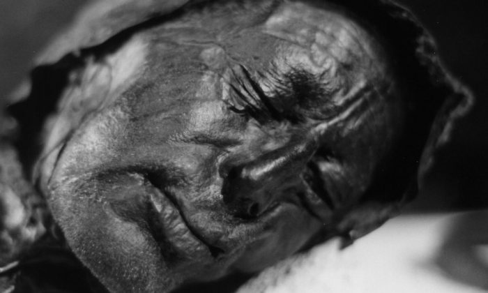 Head of the bog body known as Tollund Man, found in Tollund, Silkebjorg, Denmark, in 1950 and dated to approximately 375-210 B.C. (Sven Rosborn via Wikimedia Commons)