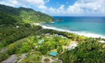 Dominica: The Preserve of the Sea Turtle