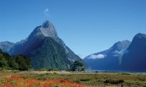5 of the Best Self-Drive Routes in Australasia