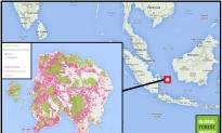 Deforestation and Mining Ruining Small Island