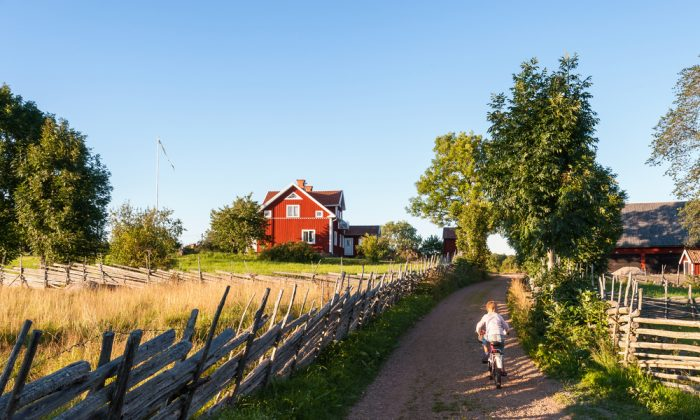 Child riding a bicycle along a small farm lane in rural Sweden. (*Shutterstock)