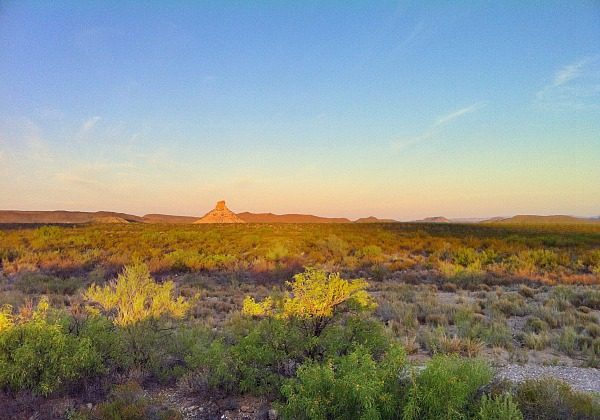 View of the Chihuahuan Desert (Traveling Ted)