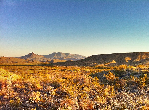 The rugged Chihuahuan Desert near St. Elena Canyon (Traveling Ted)