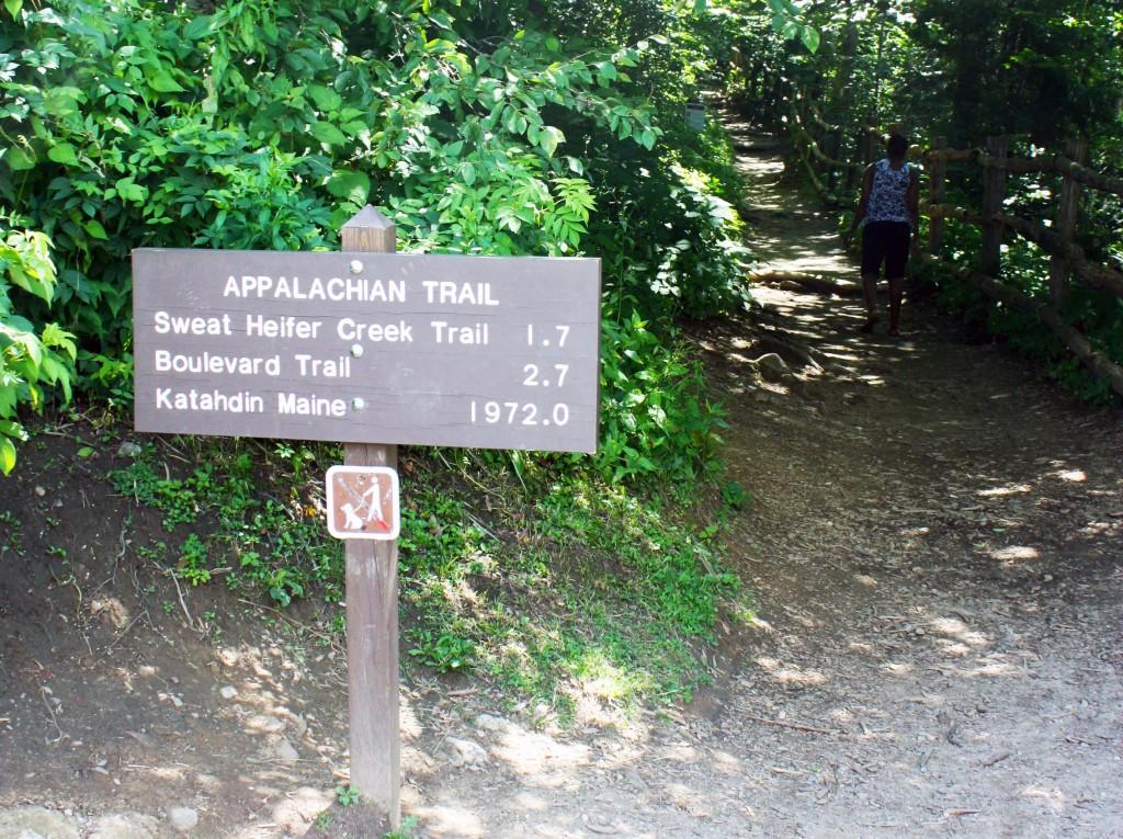 Appalachian trail (BesuDesu Abroad)