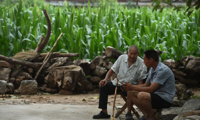 Two men listen to a portable radio near a corn field in Weijian Village, in China's Henan Province on July 30, 2014. Elderly people in China's rural areas are committing suicide at a rapidly increasing rate, according to a research study done in China. (Greg Baker/AFP/Getty Images)