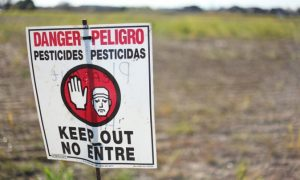 7 Ways GMOs are Destroying Humanity and the Planet
