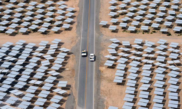 Vehicles travel on a road between rows of heliostats at the Ivanpah Solar Electric Generating System in the Mojave Desert in California on March 3, 2014. (Ethan Miller/Getty Images)