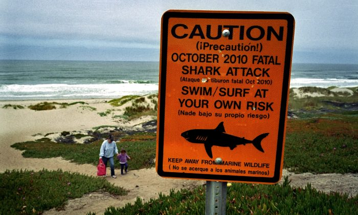 This July 11, 2011 photo shows a shark warning sign along the Surf Beach near Lompoc, Calif. in Santa Barbara County. A shark attack at the Vandenberg Air Force base beach has claimed the life of an experienced 39-year-old surfer in October 2012, following months of frequent shark sightings along the central California coast. The surfer was killed at the same central California beach where a beachgoer was killed in 2010. (AP Photo/Michael Fernandez)