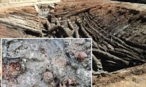 Best-Preserved Ancient Fruit Found in 4,000-Year-Old Burial Chamber: Honey's Preservative Power