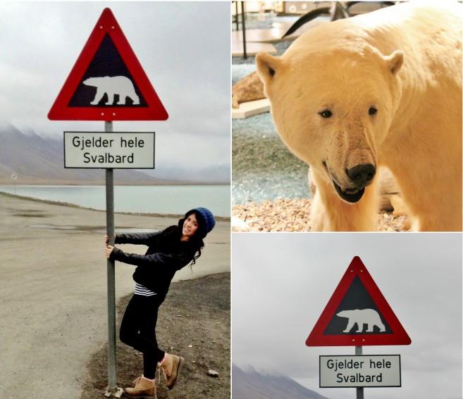 Longyearbyen (The Culture Map)