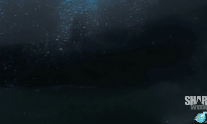A screenshot of a promotion for the Submarine Shark Discovery Channel program about the so-called Shark of Darkness, which scored high ratings. (Discovery Channel)