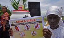 This Protein May Explain Why Ebola Is so Deadly