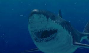 Megalodon Lives? 'Monster' Shark Still Alive? Discovery Channel Shows New Evidence on Shark Week