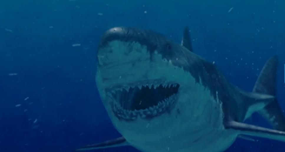 Megalodon Shark Still Alive Proof 2016
