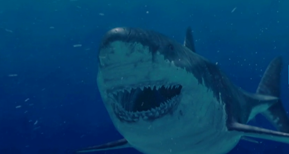 Megalodon Lives Monster Shark Still Alive Discovery Channel Shows New Evidence On Shark Week