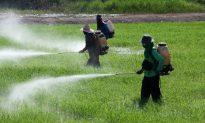 Low-Level Pesticide Exposure Linked to Parkinson's Disease