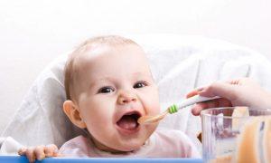 Baby Food DIY