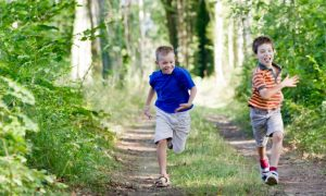 Incorporating Nature Into School Reduces Children's Stress and Improves Learning
